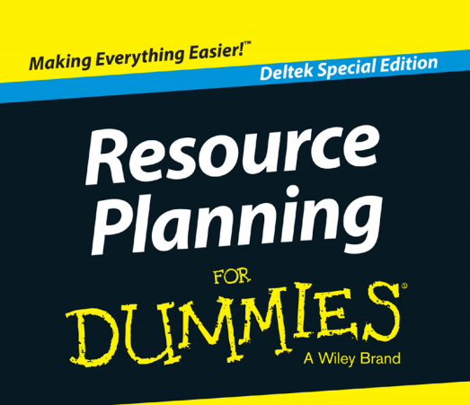 project planning for dummies pdf