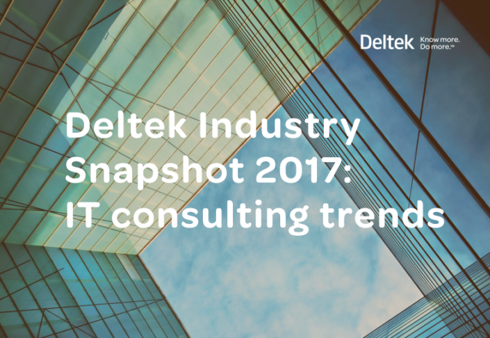 Deltek_Management_Consulting_Snapshot