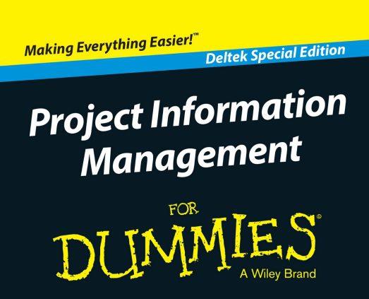 PIM eBook for dummies