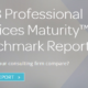 2018_Professional_Services_Report